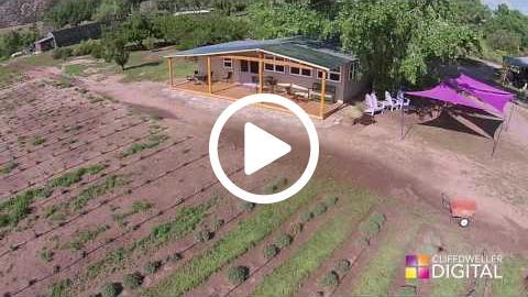Drone Footage - Purple Adobe Lavender Farm